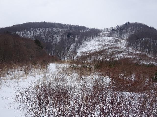 雪が無い.JPG