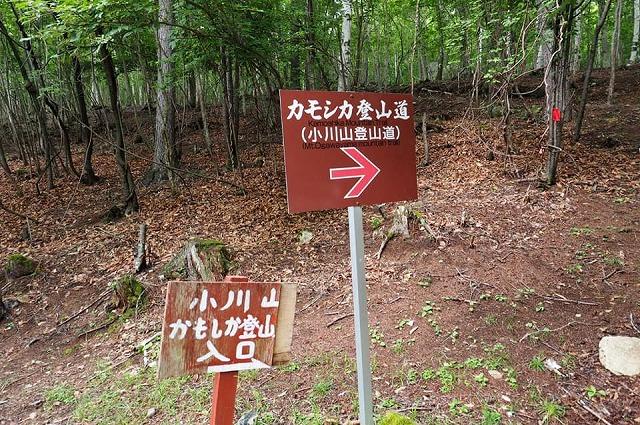 小川山2.jpg