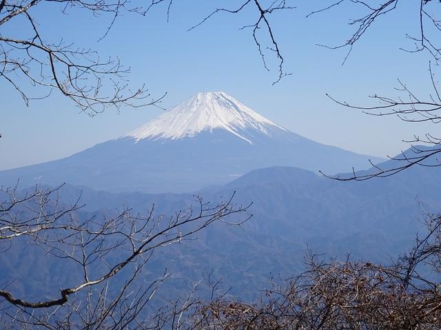 中尾根から富士.JPG