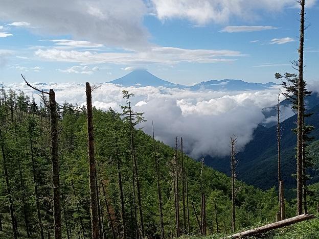 御所山整備朝の富士山.jpg