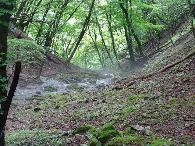 大笹池から流れ出る沢.JPG