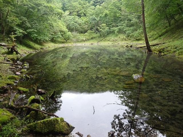 大笹池2.JPG