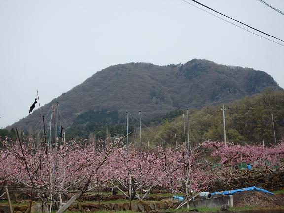 kabutoyama.jpg